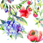 Beautiful summer flowers — Stock Photo