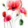 Foto Stock: Stylized Poppy flowers illustration