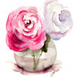 Roses flowers, watercolor illustration — Stock Photo