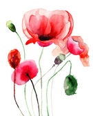 Stylized Poppy flowers illustration — 图库照片