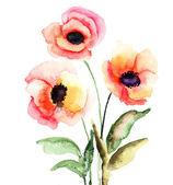 色とりどりの花 — ストック写真