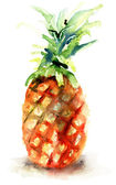 Watercolor illustration of pineapple — Stock Photo