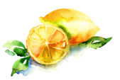 Illustration aquarelle de citron — Photo