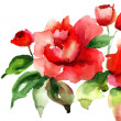 Stock Photo: Stylized Roses flowers illustration