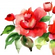 Stylized Roses flowers illustration — Stock Photo