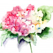 Beautiful Hydrangea pink flowers — Stock Photo