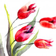Tulips flowers — Stockfoto #26117645