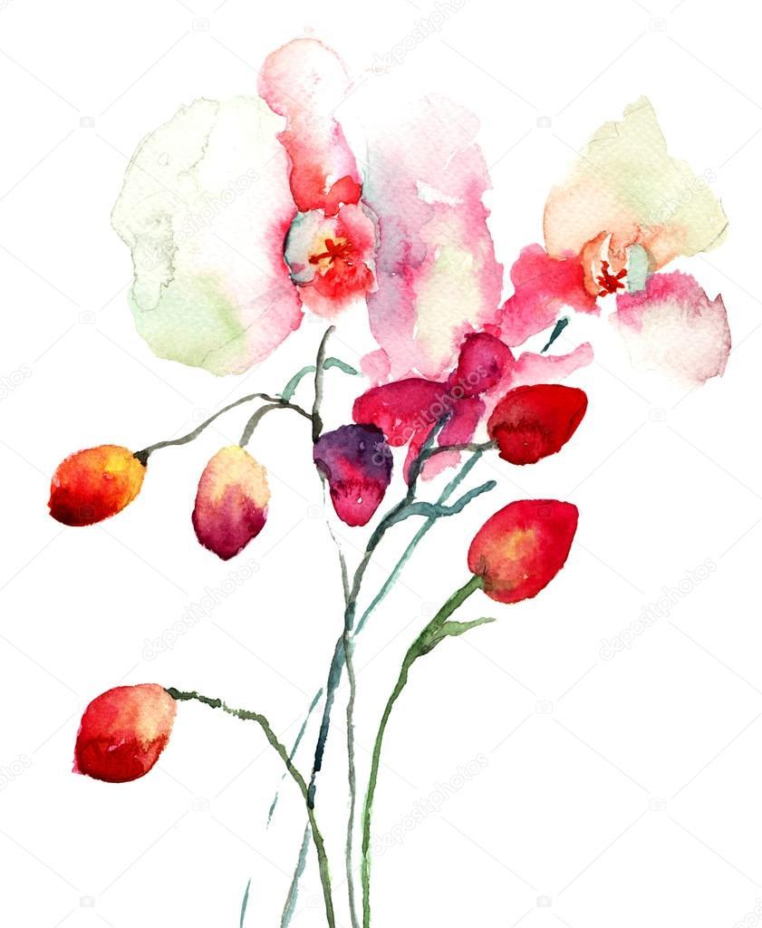 粉红色的兰花花
