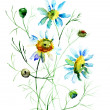 Camomile flowers — Stock Photo