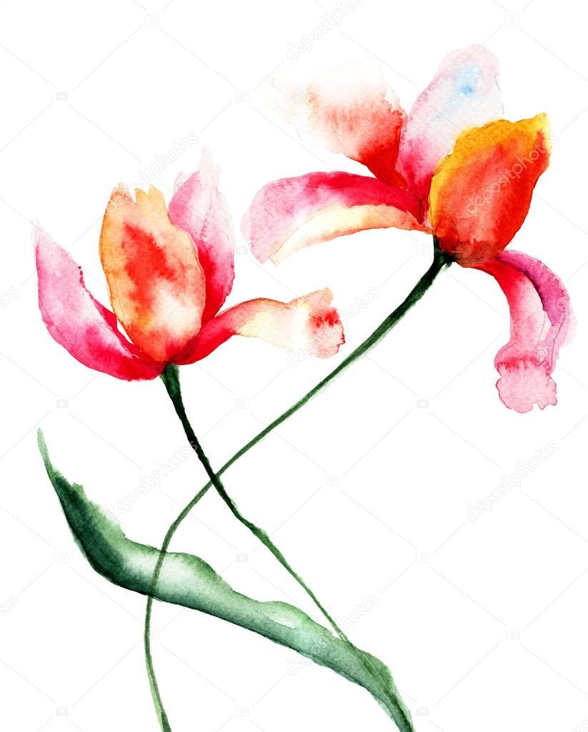 Fiori stilizzati tulipani foto stock jershova 27722409 for Fiori stilizzati colorati
