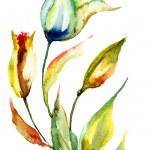 Original Lily flower — Stock Photo