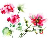 Geranium en peony bloemen — Stockfoto