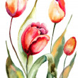 Tulips flowers — Stock Photo #29120521