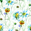 Seamless wallpaper with Camomile flowers — Stock Photo