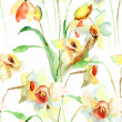Seamless wallpaper with Narcissus flowers — Stock Photo