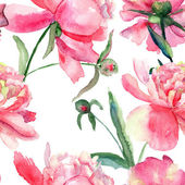 Beautiful Peonies flowers, Watercolor painting — Stock Photo