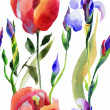 Seamless pattern with Iris and Tulip flower — Stock Photo