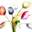 Stock Photo: Watercolor painting of Tulips flowers