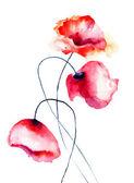 красочные цветы мака — Стоковое фото