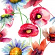 Colorful summer flowers, seamless pattern — Stock Photo