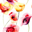 Colorful Poppy flowers, watercolor illustration — Stock Photo