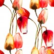 Seamless pattern with Tulips flowers — Stock Photo #37097393