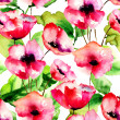 Seamless pattern with Red Poppy flowers — Stock Photo #37097623