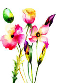 Watercolor illustration of decorative flowers — Stock Photo
