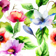 Stock Photo: Original watercolor illustration with flowers
