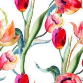 Watercolor illustration of Tulips flowers — Stock Photo