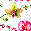 Seamless patter with Orchids flowers — Stock Photo #45393341