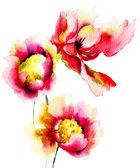 Original red flowers — Stock fotografie