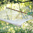 Hammock summer net — Stock Photo