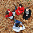 Stock Photo: Teenagers friends playing the guitar at autumn park