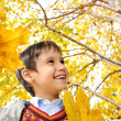 Happy kid in autumn park portrait — Foto de Stock