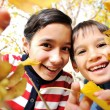 Happy kid and autumn leaves in a park — Stock Photo #13335739