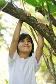 Criança na natureza segurando o braço de árvore — Foto Stock