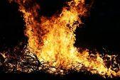 Giant fire — Stock Photo