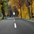 Road in forest — Stock Photo #21350497