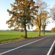 Country road, beautiful scene — Stock Photo #21351807