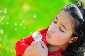 Little Girl With Dandelion Shot — Stock Photo