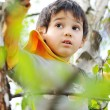 Stock Photo: Happy children in nature outdoor