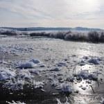 Аляска — Стоковое фото #21421771