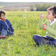 Happy childhood on green beautiful meadow — Stock Photo #21429399