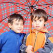 Very cute little boys in autumn clothes and with umbrella isolated — Stock Photo