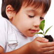 Royalty-Free Stock Photo: Little cute child holding green plant in hands