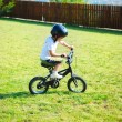 Foto Stock: Childhood activity with bike on green meadow