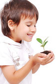 Little cute child holding green plant in hands — Stock Photo