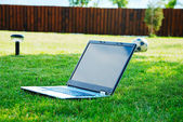 Laptop on green meadow and the ball in back — Stock Photo