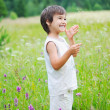 Cute little boy on green grass in nature — Stock Photo